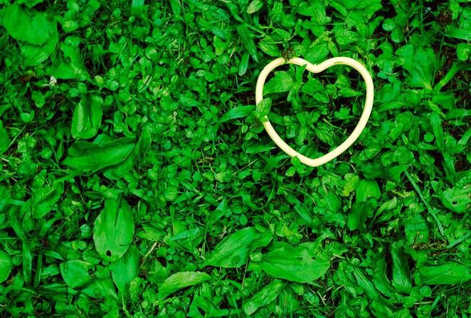 green_valentine.jpg.662x0_q70_crop-scale